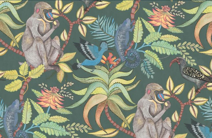 Cole and son wallpaper Ardmore collection