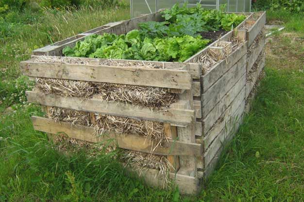 raised bed built with pallets - straw for insulation.