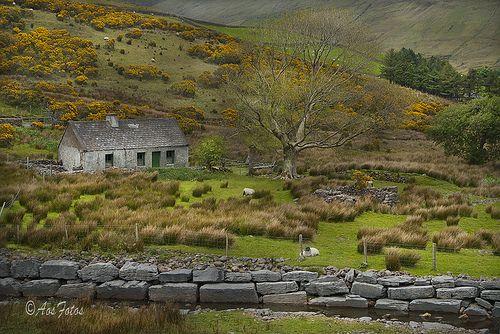 dorasireland:    Gowlaun Galway (Ireland) (by Adrian !!)