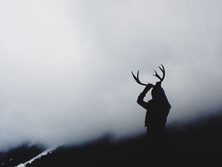 benschuyler:  Oh deer.  // benschuyler.tumblr.com Instagram: @Ben Silbermann Schuyler