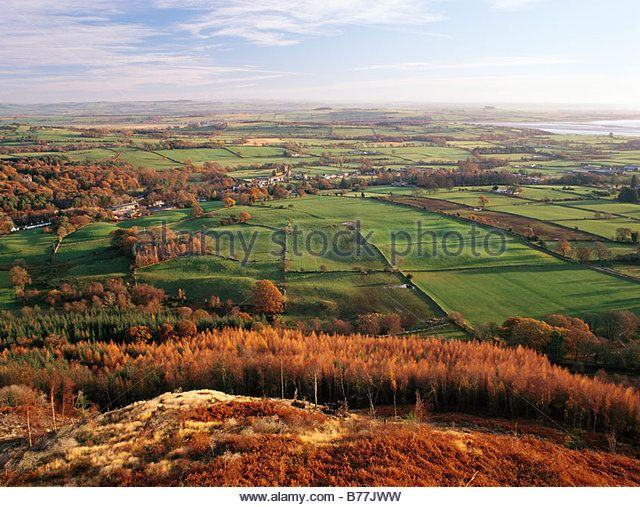 The Nith Estuary National Scenic Area looking down on Sweetheart Abbey amoungest a patchwork landscape of fields - Stock Image