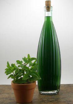 Liquore alla menta: è aromatico e fresco mantiene il profumo della menta. E' un ottimo digestivo da gustare anche freddo. Il periodo ideale per prepararlo è l'estate.