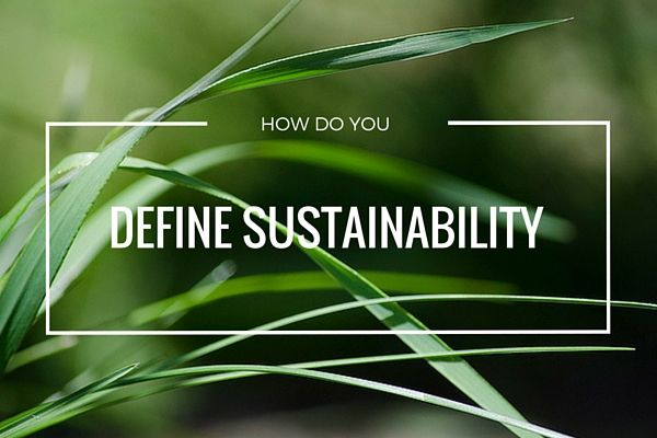 How Do You Define Sustainability?