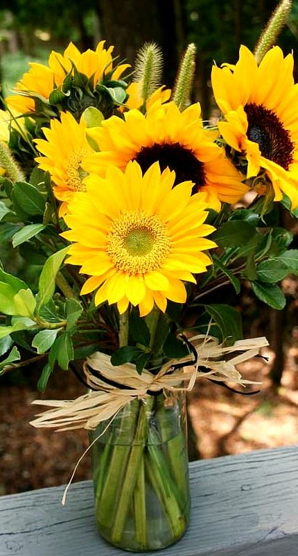 A sunflower bouquet.
