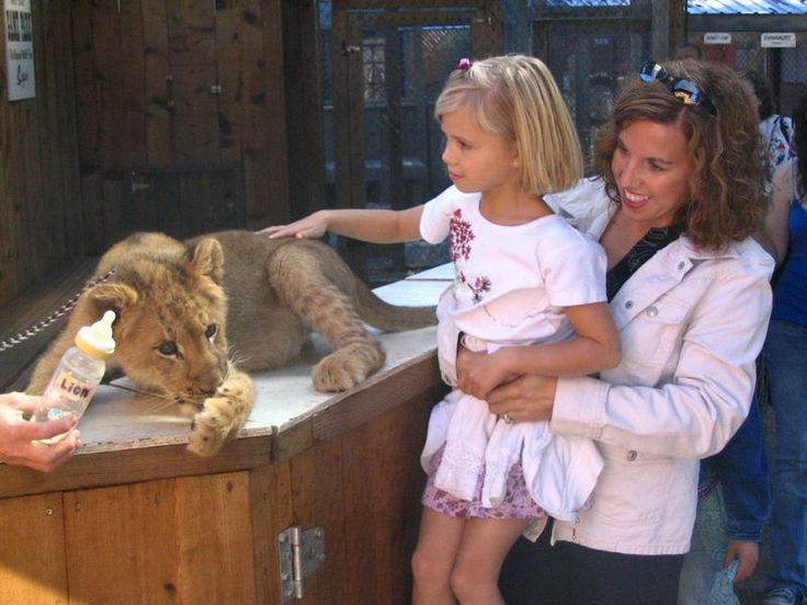 West Coast Game Park Safari | Bandon, OR