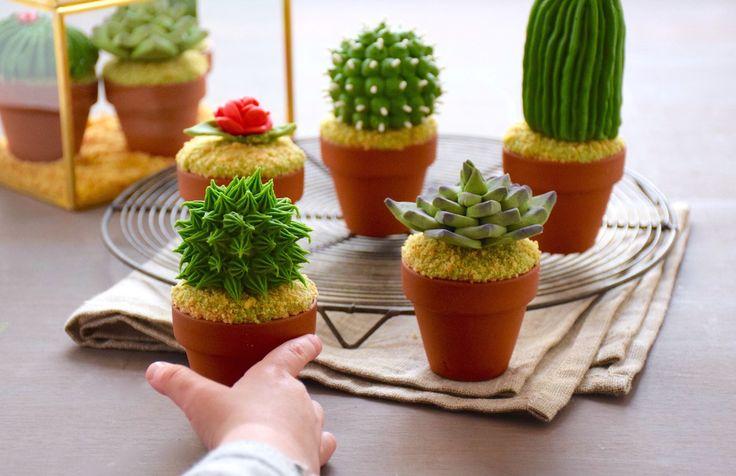 Cupcakes cactus