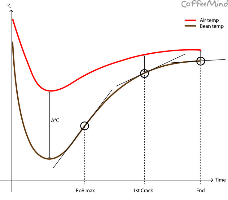 This blog post is sketching out the basics of a roast profile analysis and introduces the concepts and basic calculations that are part of the exam for the Roasting professional in the SCAE Coffee Diploma System.