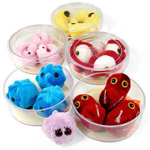 Petri Dish Plush Giant Microbes - amoebas, common cold, E. coli, ebola, flesh eating virus, flu, gonorrhea, HIV, kissing disease, mono, lyme disease, mad cow disease, rabies, salmonella, syphilis, mold $12.99