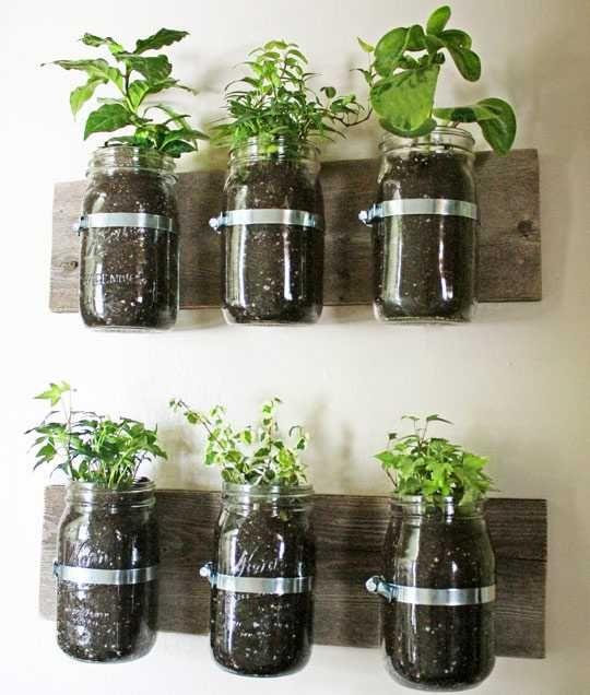 diy vertical garden with glass jars