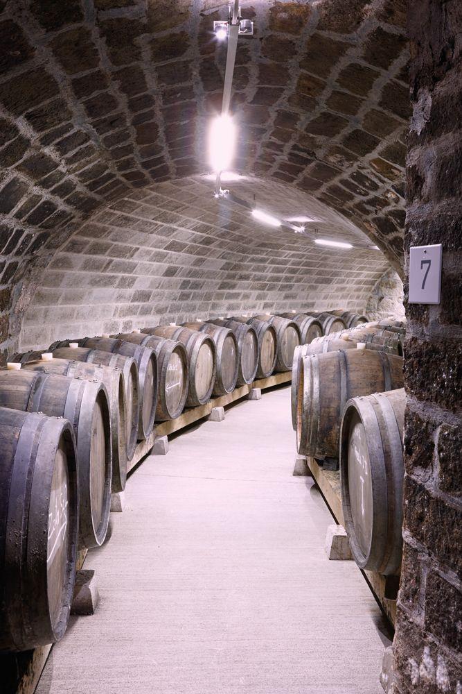 Holdvölgy Tokaji winery mád Hungary wine cellar system  http://www.furmintphoto.com/holdvolgy-pince