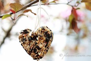 Homemade bird seed ornaments.