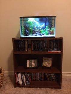 Best 25 10 gallon fish tank ideas on pinterest 1 gallon for How to make your own fish tank