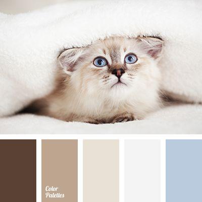 Best 25 brown color palettes ideas on pinterest - Country blue color scheme ...