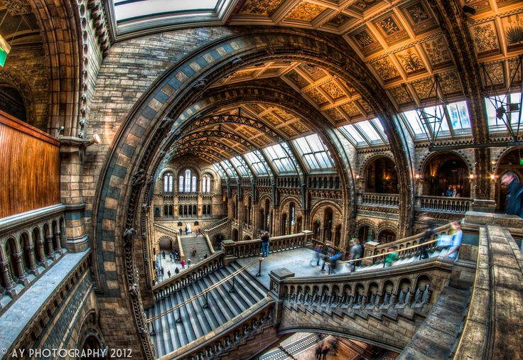 Natural History Museum, London, England  Excellent work!!