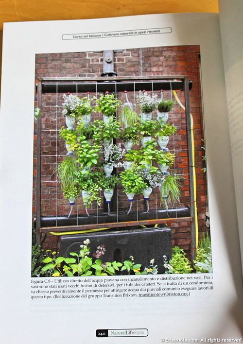 19 best Orto sul balcone images on Pinterest | Herb garden, Herbs ...