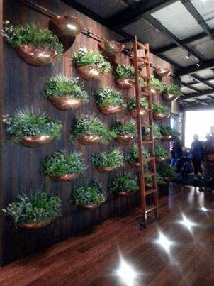 Recent Click Grow Indoor Smart Fresh Herb Garden Kit 640 x 480