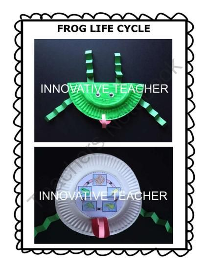 Innovative Classroom Teaching ~ Best images about frogs on pinterest crafts