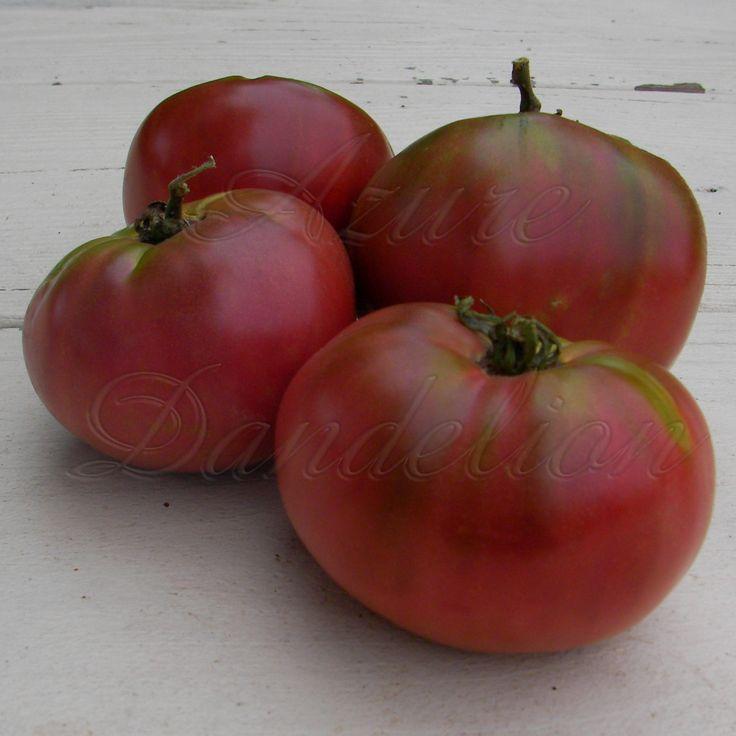 87 Best Heirloom Tomato Seeds Images On Pinterest 400 x 300