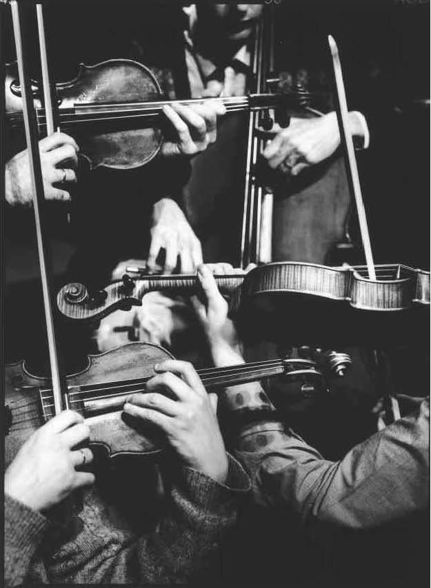 music. violins. black and white. close-up. gorgeous.