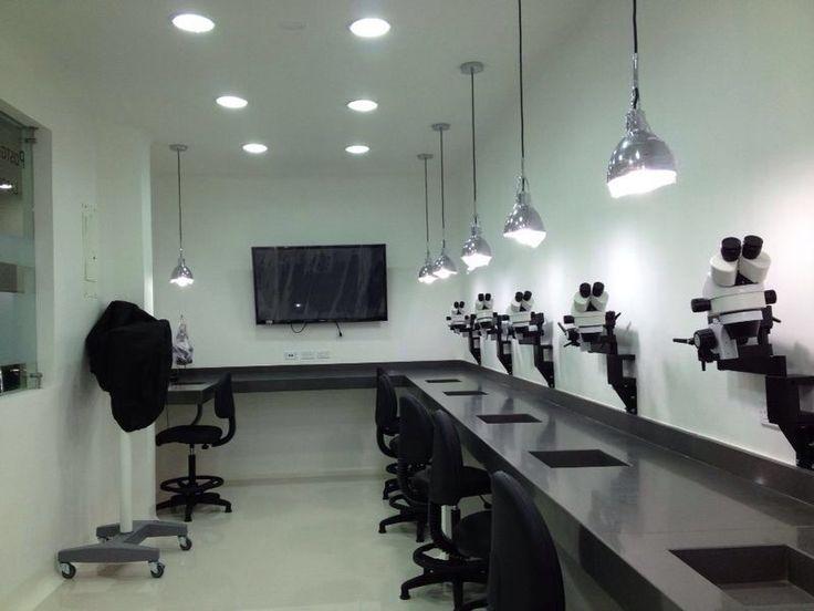 Laboratorios Especialización en Endodoncia