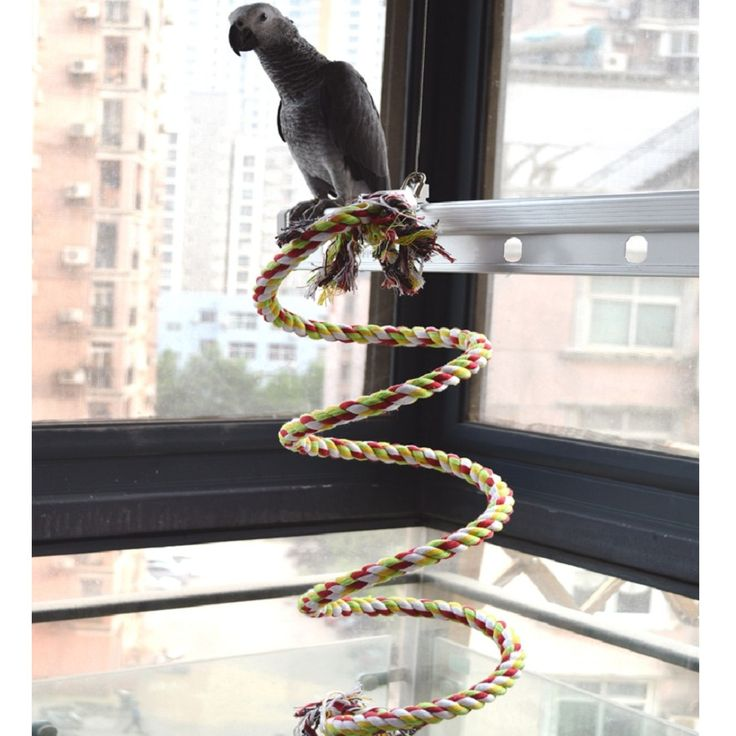 160cm Long Parrot Bird Toys Pet Bird Parrot Standing Rope Bird Cage Decoration Climbing Toy Parrot Bird Cage Toys Rope Bell // FREE Shipping //     Buy one here---> https://thepetscastle.com/160cm-long-parrot-bird-toys-pet-bird-parrot-standing-rope-bird-cage-decoration-climbing-toy-parrot-bird-cage-toys-rope-bell/    #hound #sleeping #puppies