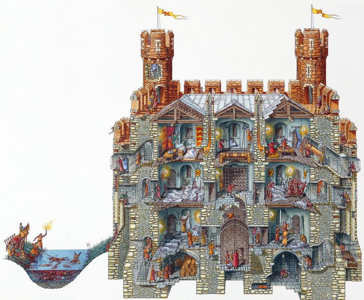 Incredible Cross Sections - Gallery | eBaum's World