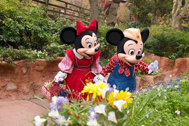 東京ディズニーランド,ミッキー,ミニー,手つなぎ,お花,きれい