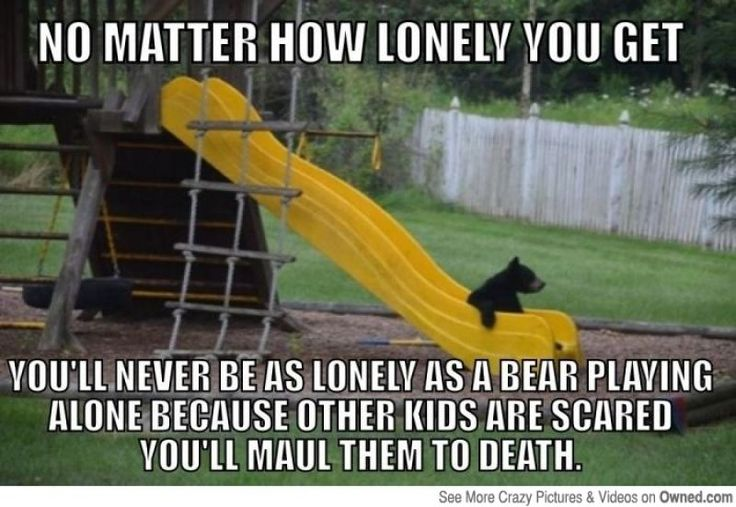 The True Definition of Loniless is bear related