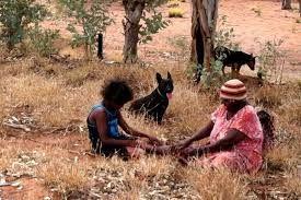 Aboriginal healers working to keep traditional medicine alive