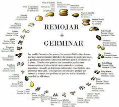 Cómo Hacer Leche de Almendras (+ Activación de Frutos Secos). | The Simple Life