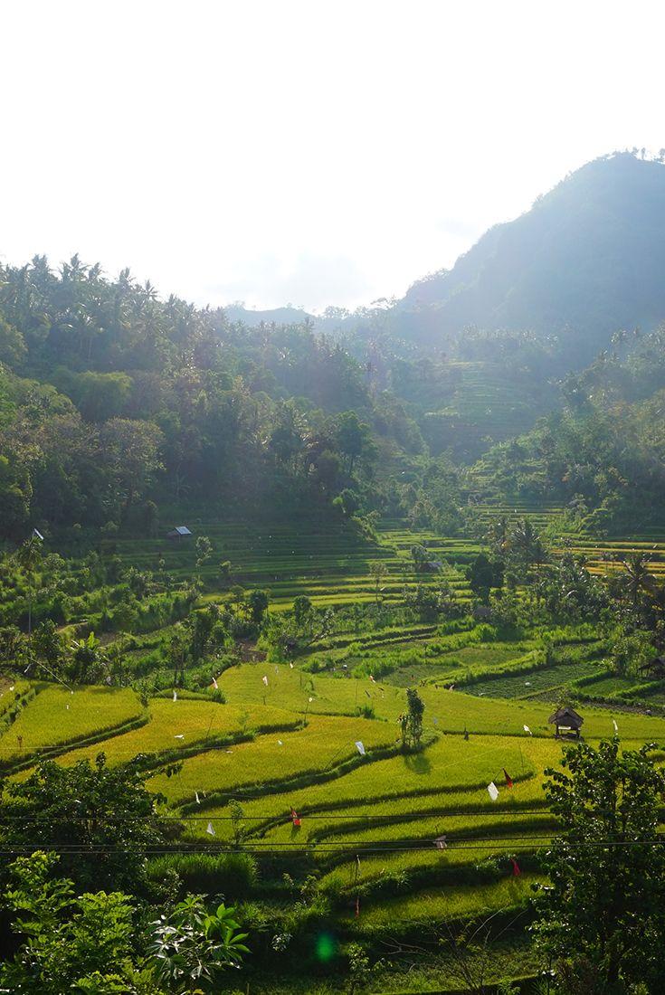 Amed Bali, Indonesien