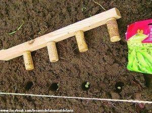 Petit outil pratique pour semer les graines...