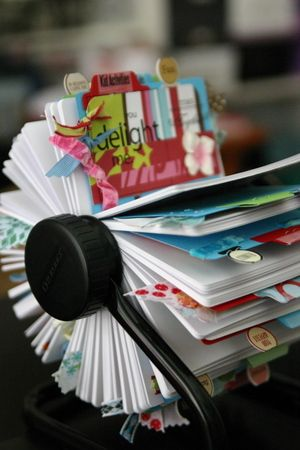 Idea Rolodex. I'm a super organised person, but when it comes to craft ideas etc. they are all over the place. In craft books, magazines, online, folder etc. so this easy to reach mini file is an excellent idea.