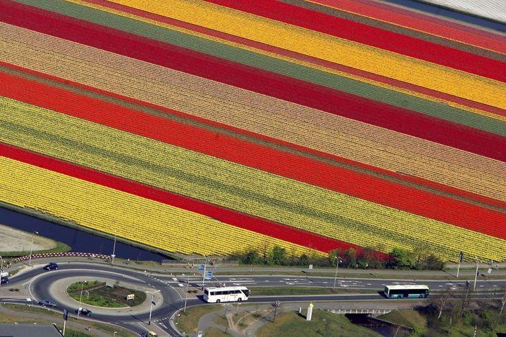 Ogród Europy
