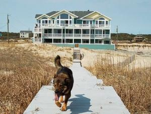 pet friendly vacation rentals in corolla