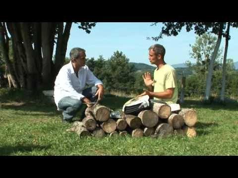 Jardiner : arrosage écologique