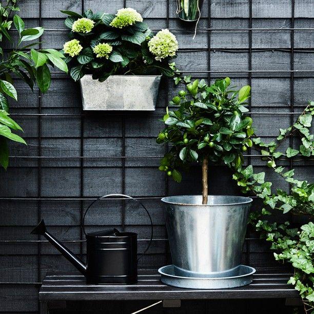 Plaats een zelfde kleur betongaas tegen je schutting en hang hieraan leuke plantenbakken of waxinelichtjes.
