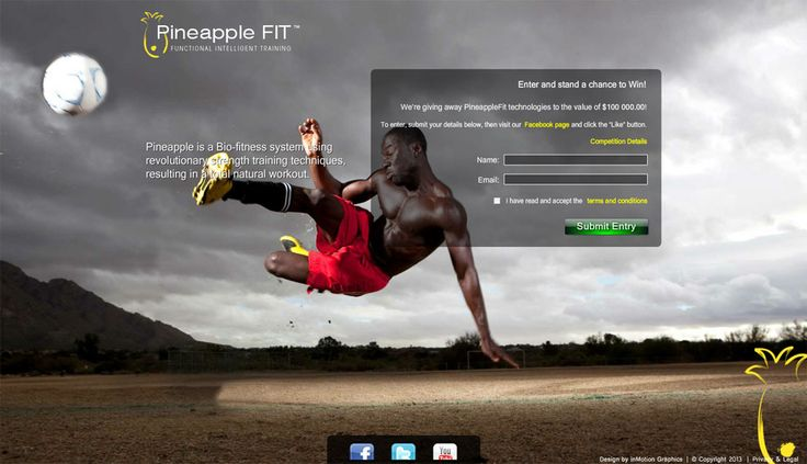 PineappleFit: Flash Project Details by inMotion Graphics