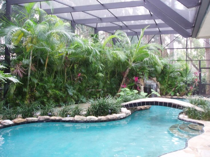 17 best images about landscaping yard inspiration on for Pool design boca raton