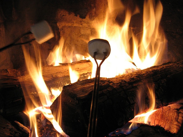 Image result for toasted marshmallows pixabay