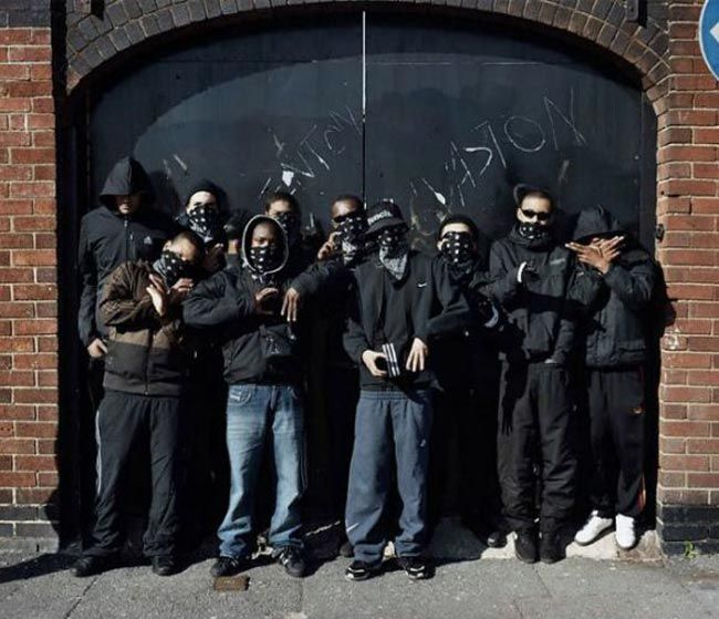 gangs a brotherhood of violence essay Introduction to gangs in america explains how gangs are addressed as a criminal justice aryan brotherhood black guerrilla managing violence and gangs in.