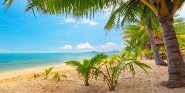 Sand Meer Himmel Palmen Natur tropische Landschaft schöne Tapete