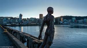Image result for wellington