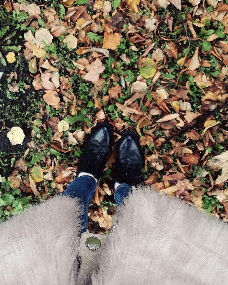 Fall time!