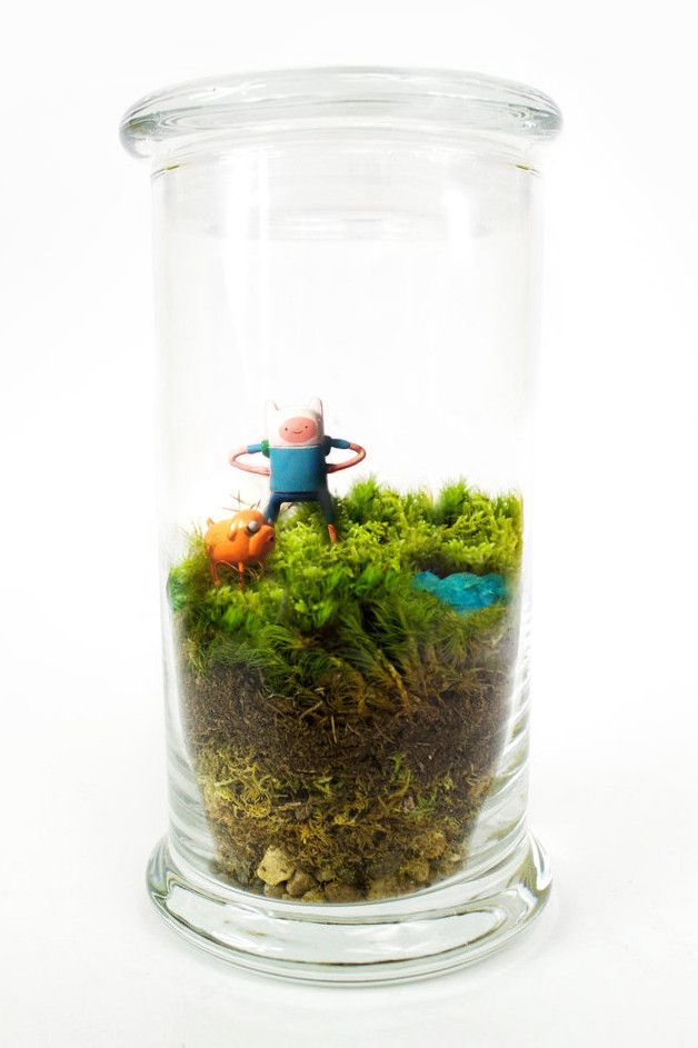 Adventure Time Terrarium http://shop.nylon.com/collections/whats-new/products/adventure-time-terrarium #NYLONshop