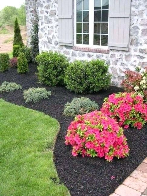 Small Evergreen Shrubs For Landscaping Garden Inspiring Landscaping Bushes For Front O Front Yard Landscaping Design Outdoor Landscaping Front Yard Landscaping