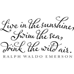 Live in the sunshine: Life Quotes, Good Quotes, Ralphwaldoemerson, Awesome Quotes, Ralph Waldo Emerson, Favorite Quotes, Gotta Remember, Emerson Wall, Beautiful Quotes