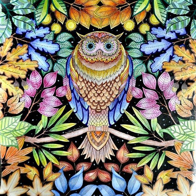 Night Owl Joanna BasfordNight OwlColoring BooksAdult ColoringColouringSecret GardensOwlsForests