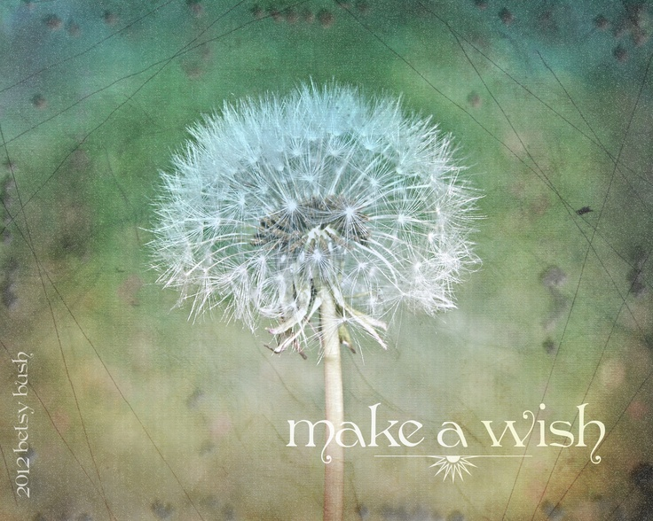 make a wish by betsy bush http://www.facebook.com/pages/Dragonfire-Graphics/210184762345120?created