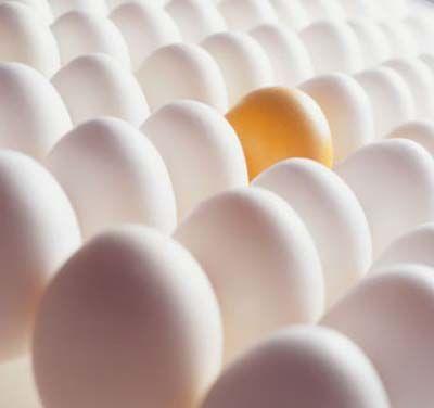 Yumurta ihracatında söz sahibiyiz